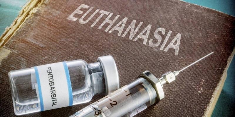 Razones del No, a la Eutanasia